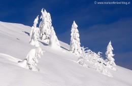 Gemeindealpe Gipfel