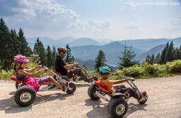 Mountaincart-Gemeindealpe