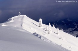 Gemeindealpe_Gipfel
